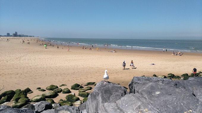 ベルギーの海岸