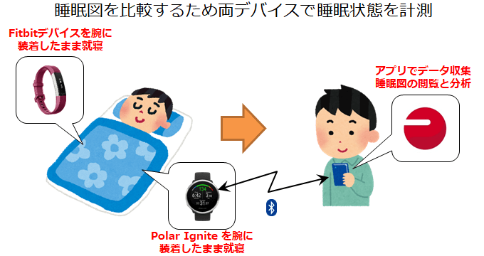 PolarとFitbitをそれぞれの腕につけてデータを取得
