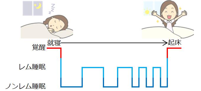 睡眠管理図のイメージ
