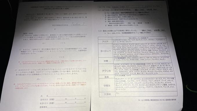 飛行機内でもらった申告用紙と健康用紙